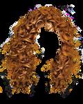 Hair Png 6