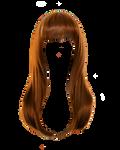 Png Hair 3