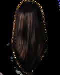Png Hair 13