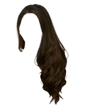 Png Hair 12