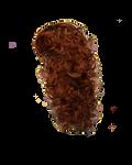 Png Hair 15