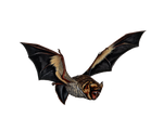 Png Bat