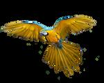 Png Bird