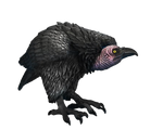 Png Vulture