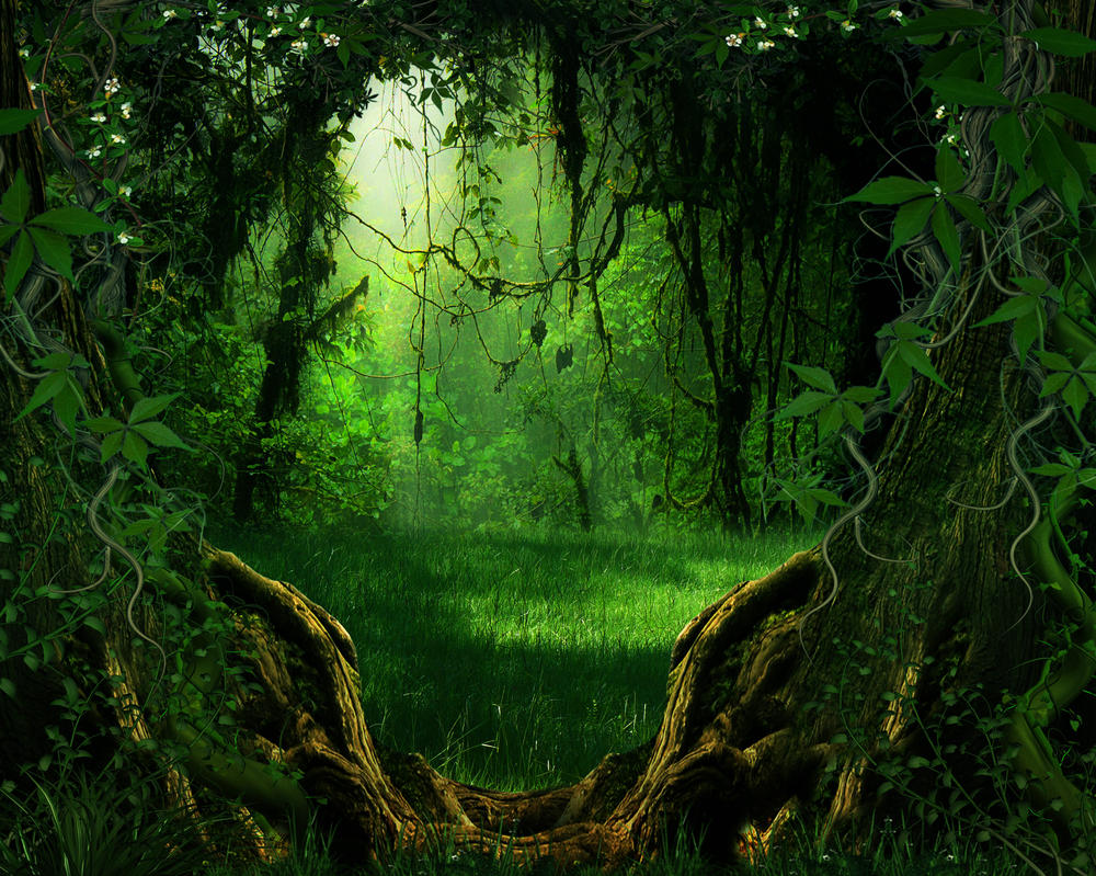 Bg nature stock by moonglowlilly on deviantart for Artiste nature