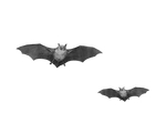 Png Bats