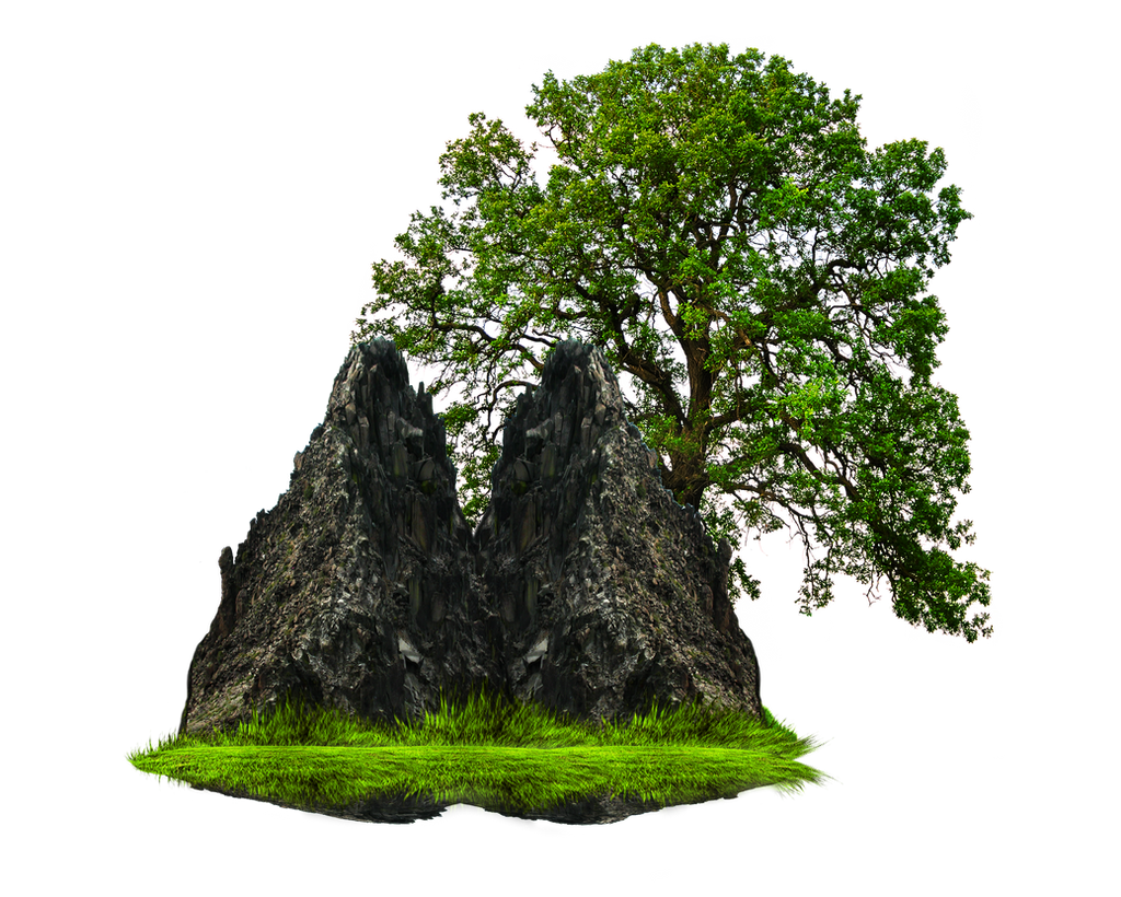 Png Rock And Tree