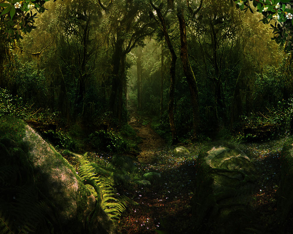 Woods Bg Stock2 by Moonglowlilly