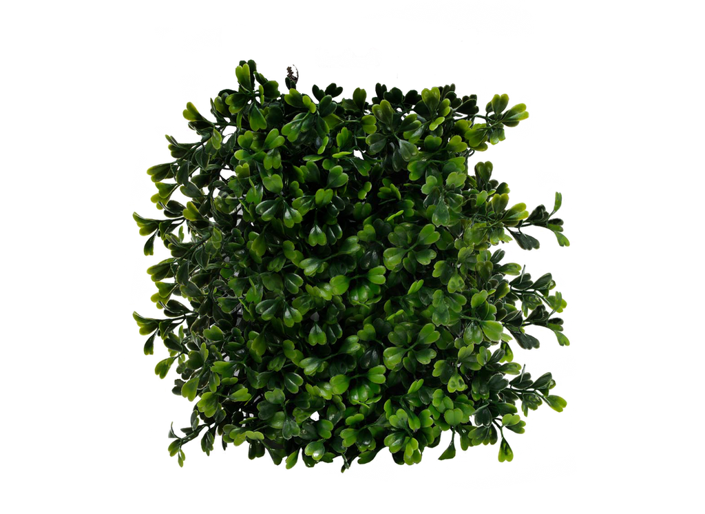 Flower Plant Png Png Plant by Moonglowlilly