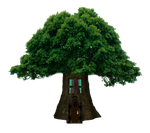 Png Tree House