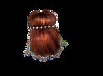 Png Hair 68