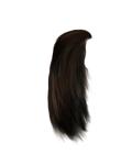 Png Painted hair 4
