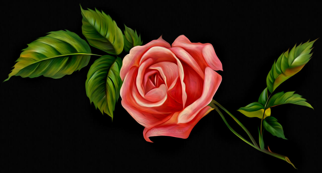a single rose digital painting by chamirra on deviantart