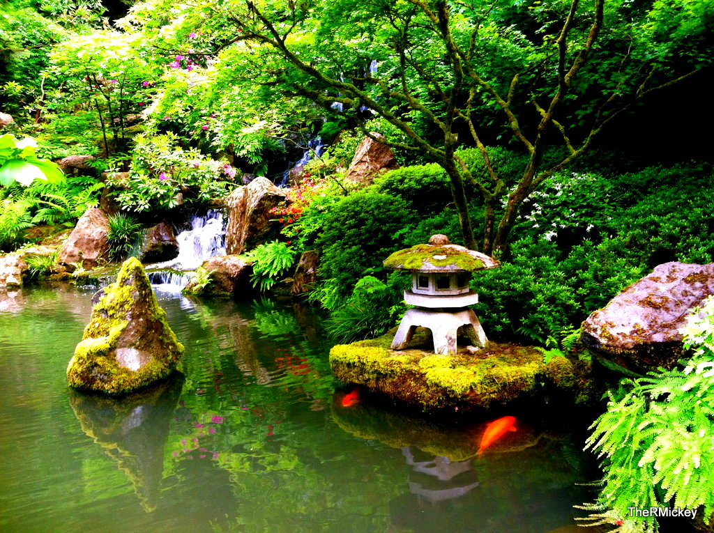 Koi fish pond by the rmickey on deviantart for Fish pond base