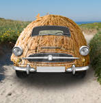 Coconut car