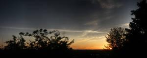 Backyard Night Sky