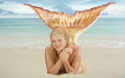 Rikki on the beach