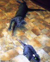 Lexus-cat and... hmmm... rat. by Defyz