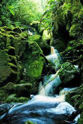 oprara waterfall by swissloko