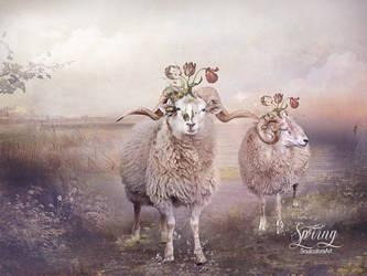 Vintage Spring by SoulcolorsArt