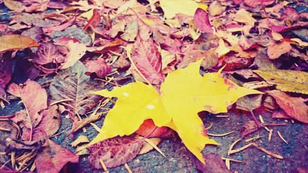 AutumnLeaves by Nevrandil