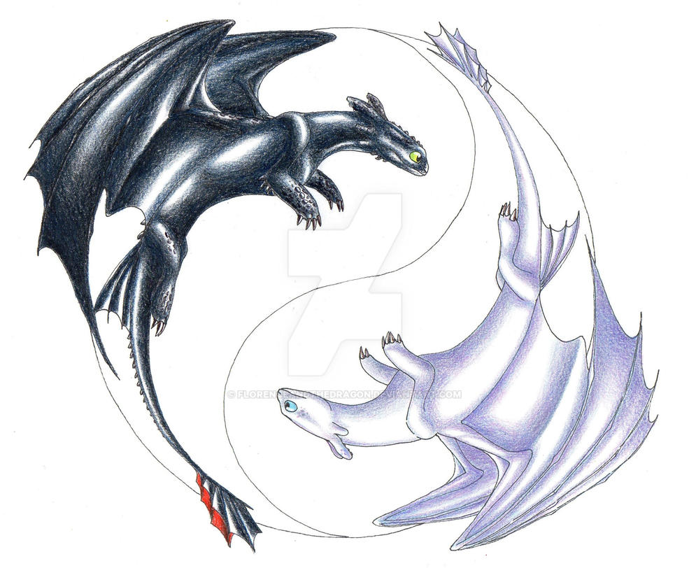 toothless and the white night fury wip 2 by florenceandthedragon on