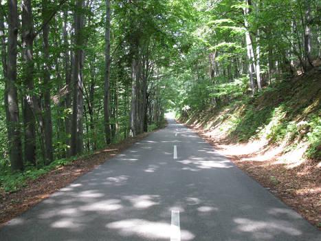 Majdanpek road