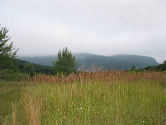 Majdanpek nature 30