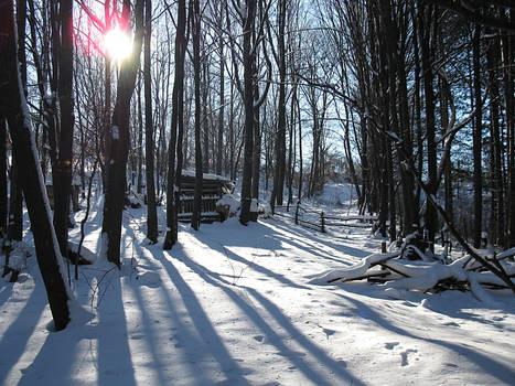 Under the snow 3