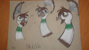 Niuzai expressions