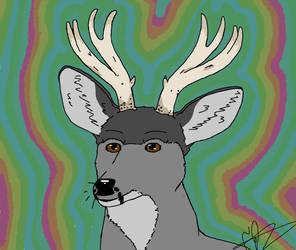 Moose the Mule Deer (gift for SleepySundae)