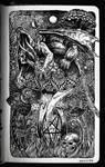 Sketchbook | Rubroboletus Satanas