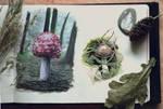 Sketchbook | Mushroom Studies