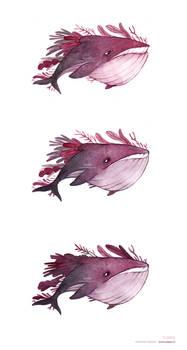 Baleines a l aquarelle
