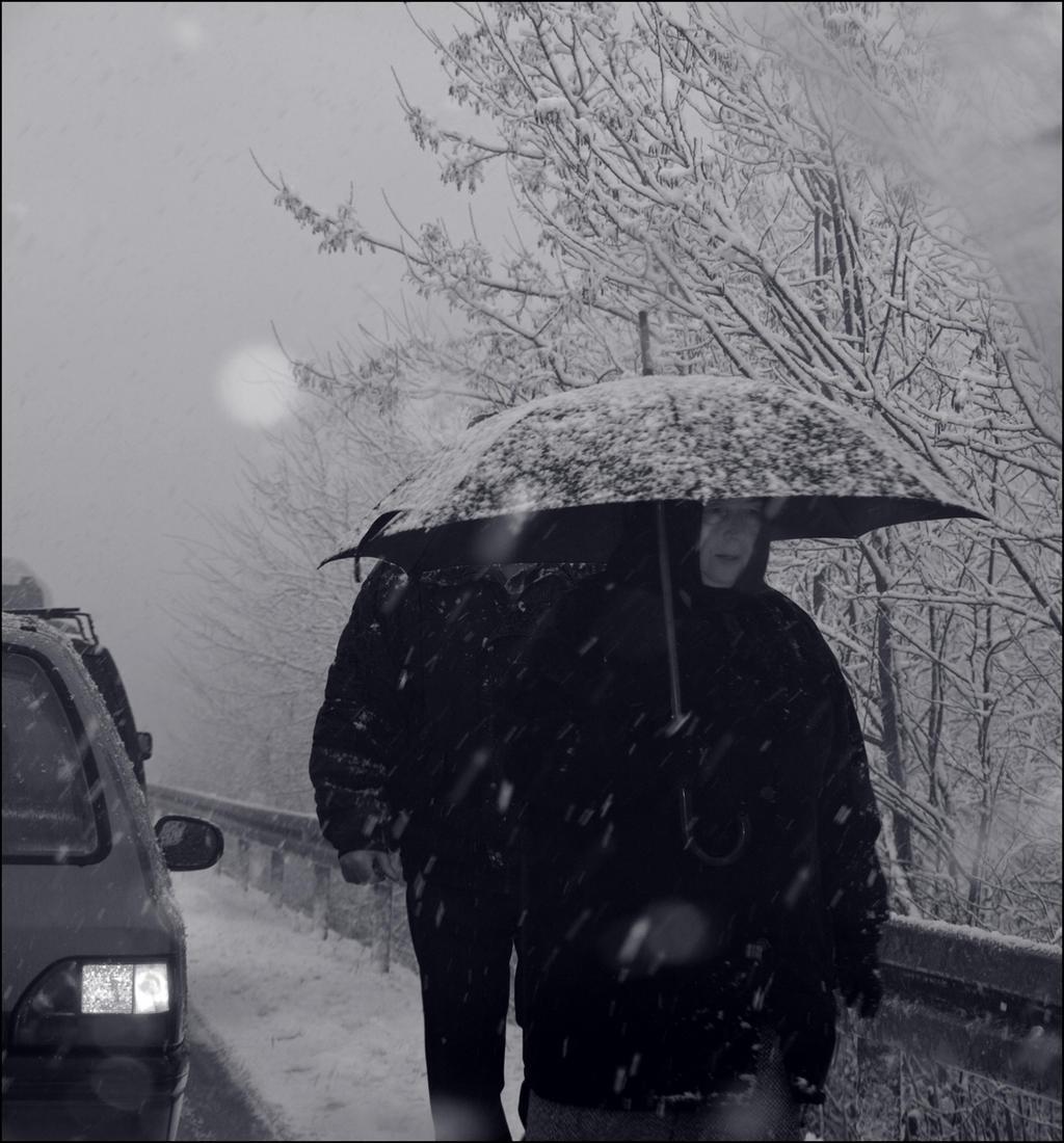 Under umbrellas by siscanin