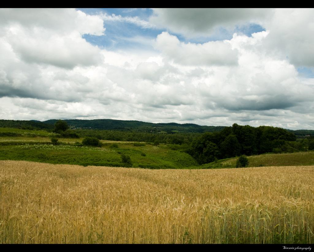 Landscape02 by siscanin