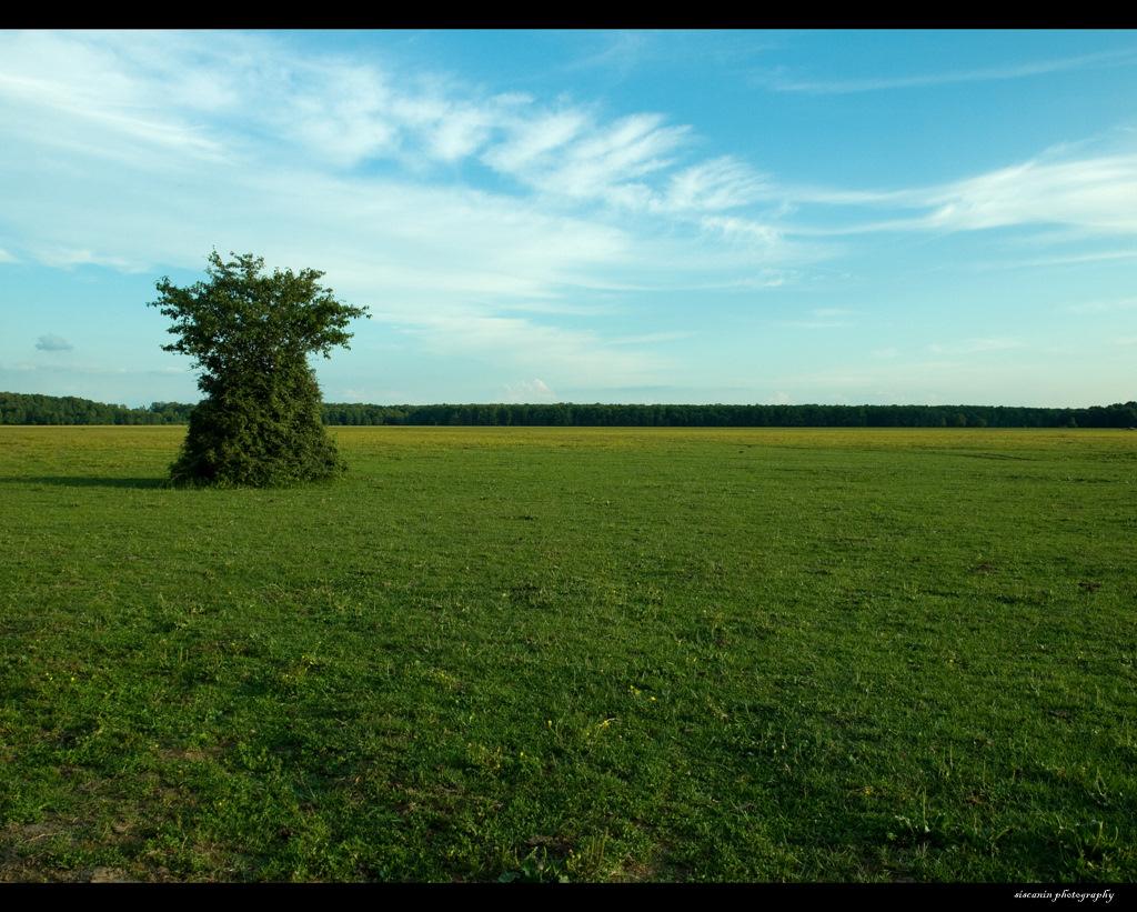 Landscape06 by siscanin