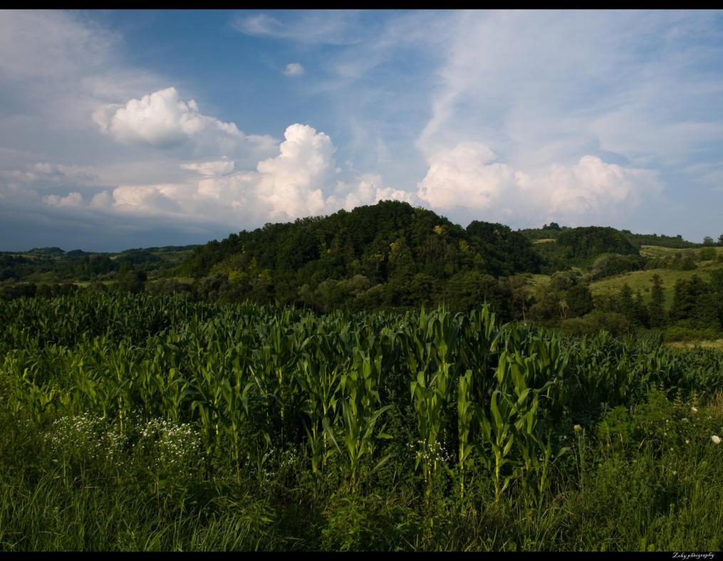 Landscape10 by siscanin