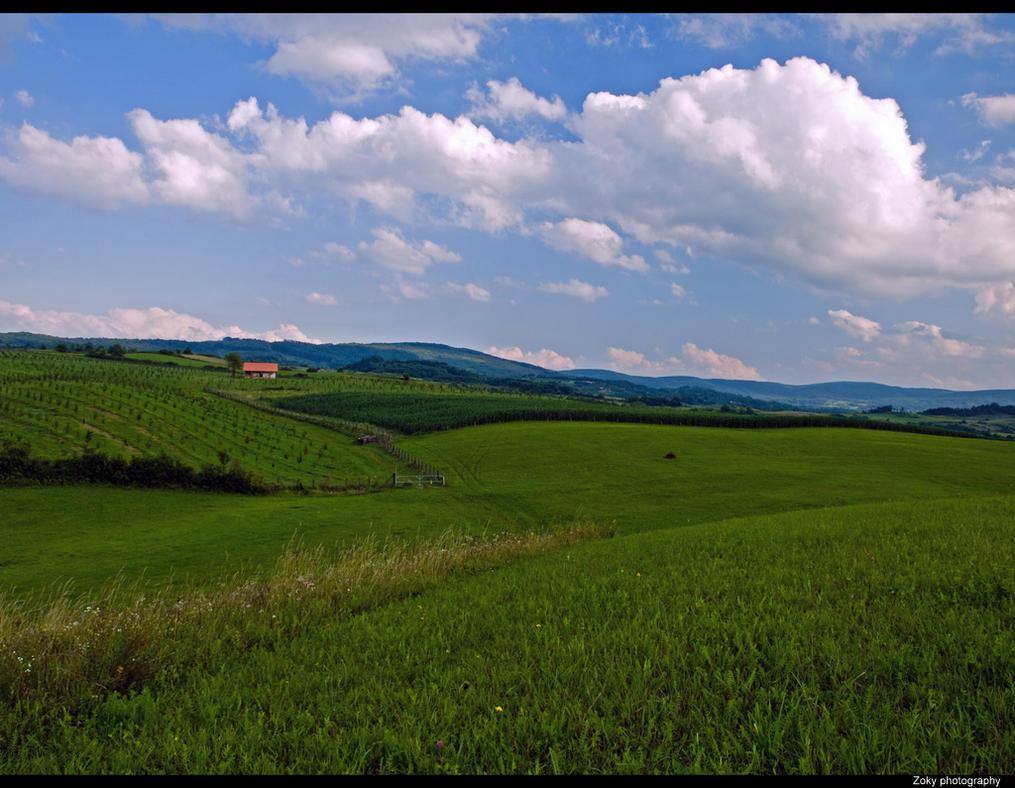 Landscape13 by siscanin