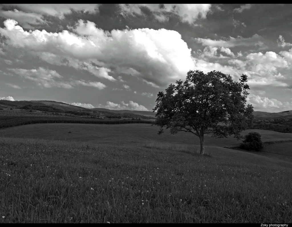 Sky3 by siscanin