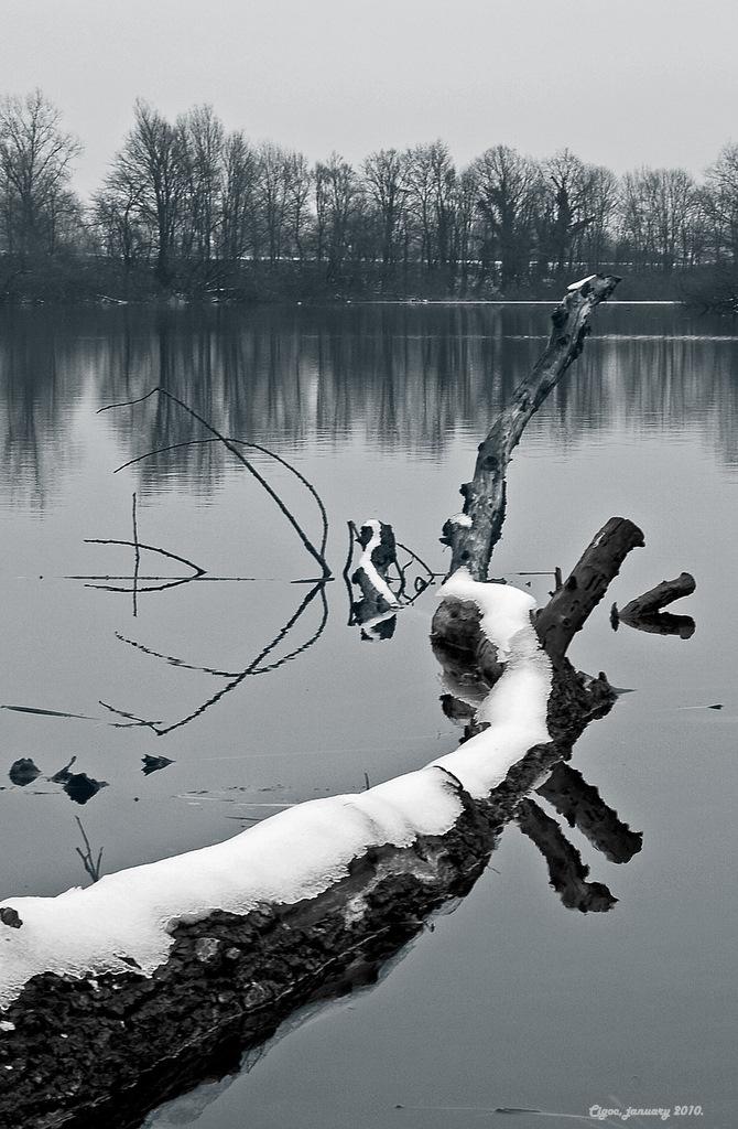 Winter in Cigoc by siscanin