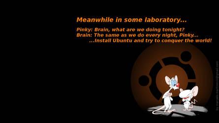 Pinky and brain ubuntu by marcelomartinovic