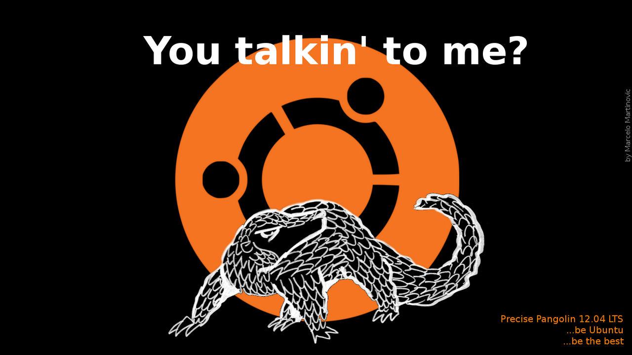 ubuntu by marcelomartinovic