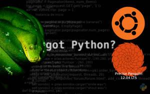 ubuntu presice pangoline python by marcelomartinovic