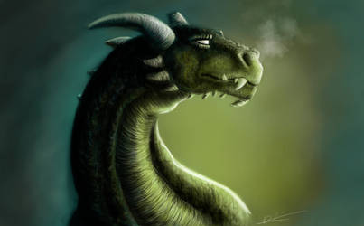 Dragon by Dracarian