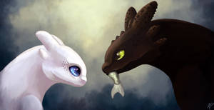 Toothless and the white fury - HTTYD 3