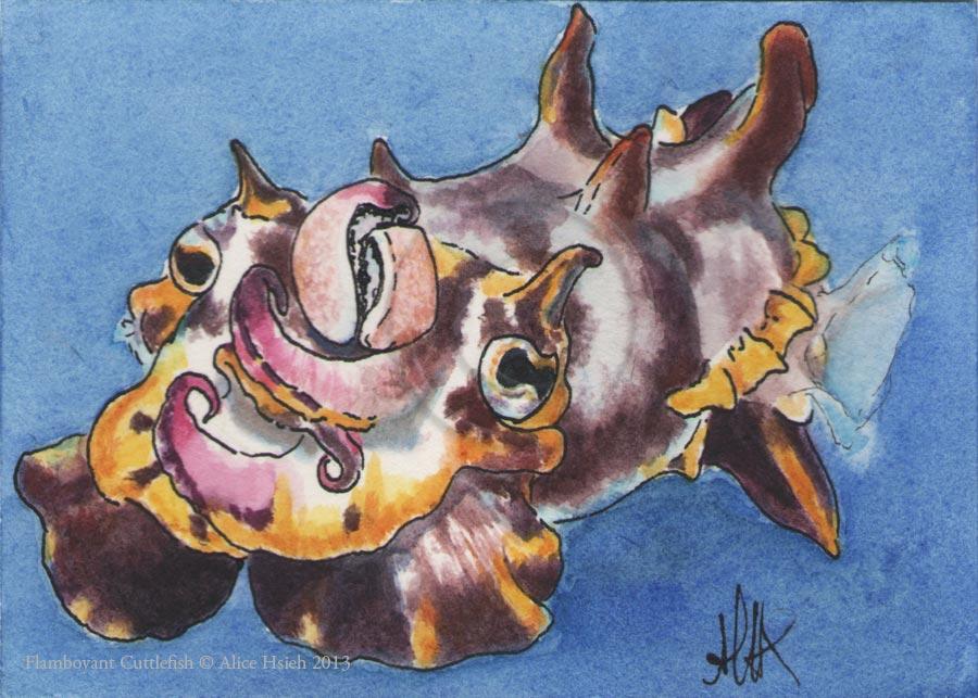 Flamboyant Cuttlefish by changewinds