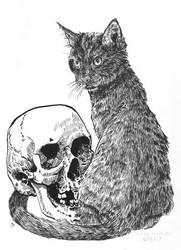 Lika, the Friday the 13th Cat