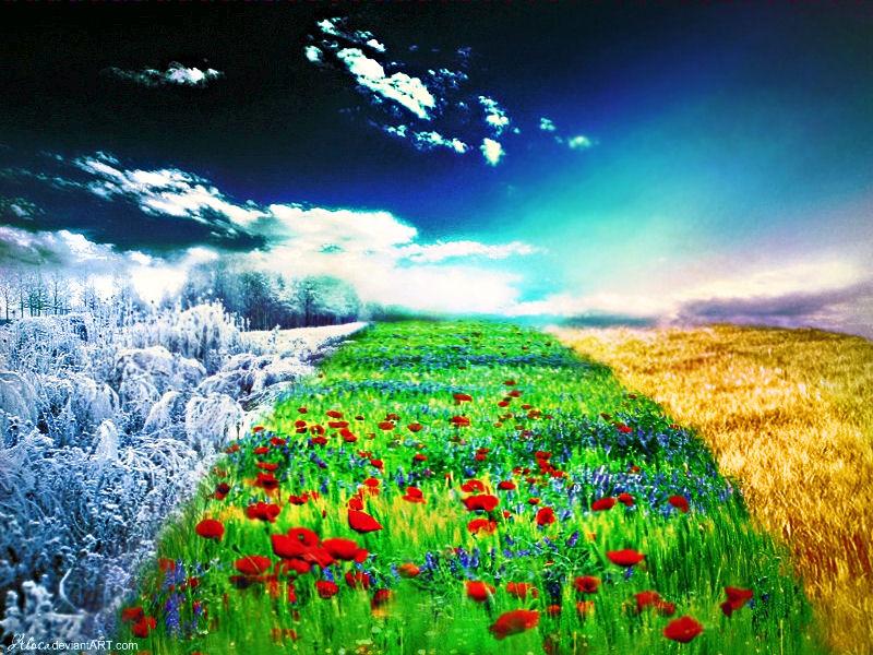 Way of year's seasons by Alosa