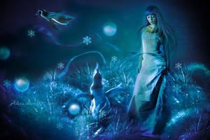 WinterLand by Alosa